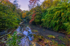 Turtle Creek Peek (tquist24) Tags: hdr highlandpark nikon nikond5300 outdoor texas turtlecreek autumn color creek fall geotagged green nature reflection reflections river tree trees water