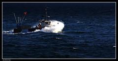 Partir en Pêche...... (faurejm29) Tags: faurejm29 canon sea seascape mer matin