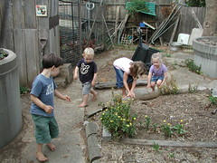Kids down the back (spelio) Tags: kids backyard garden drought lawn