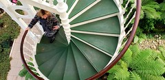 """""""Come Up And See Me"""" (standhisround) Tags: royalbotanicalgardens stairwell female lady girl people rbg kewgardens kew london england uk spiralstaircase foliage green plants bannisters"""