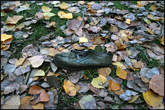 Shoe (anna punx) Tags: medinaderioseco valladolid otoño canal autumn river rio water spain landscape shoe zapato cordones laces leaves yellow green hojas amarillo verde old viejo contraste grass hierba