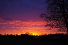 Farbenfroher Sonnenaufgang (jezebel_cux) Tags: cuxland niedersachsen lowersaxony deutschland germany sonnenaufgang sunrise wolken cloud