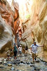 Utah_2018_ (6 of 144) (jasinrodriguez) Tags: zion trekking family narrows subway zionnationalpark nationalparks outdoors