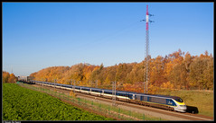 Eurostar 3015/3016 @ Petit-Enghien (Steven De Haeck) Tags: petitenghien lettelingen henegouwen hainaut belgië belgique lijn1 eurostar london brussel bruxelles lgv hsl tmst transmanchesupertrain e300 herfst