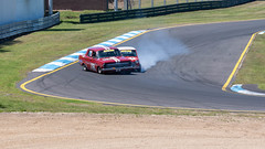 When Minis Attack (Jacs_Pics) Tags: 2018 november melbourne day2 carracing historicracing motorsport nikond750 sandown spring