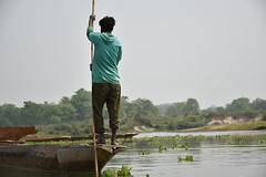 Sailing over the crocodiles river (Damien Moulard) Tags: boat river swamp nepal jungle stick wood crossing
