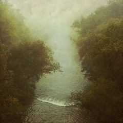 river in fog (Dyrk.Wyst) Tags: bergischesland deutschland germany herbst nebel september wupper wupprtal atmosphere deciduousforest fog foliage forest landscape mood nature outdoors river trees wilderness haze light leaves mist branches hills valley noone conceptual creativephotography dreamy fineart impressionistic mystical square texture photoshelter behance agentur