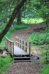 Camp bridge