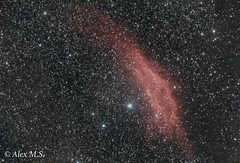 Nebulosa de California (alexmanzaneraserra) Tags: astrophotography astronomy longexposure nebulosity nightsky nightphotography night deepsky universe