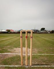 20181215_2396_1D3-27 Anyone for Cricket? (349/365) (johnstewartnz) Tags: 349365 day349 onephotoaday oneaday onephotoaday2018 365project project365 cricket wicket wickets stumps sport canon canonapsh apsh eos 100canon 1dmarkiii 1d3 1dmark3 1d 1dmkiii 1dmk3 1diii 1740mm 1740 ef1740mmf4lusm