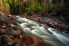 Rainier Flow (Travis Rhoads) Tags: green mtrainiernationalpark 2018 sonyalphaa9ilce9 rivers nationalpark formatthitech formatthitechfirecrest4stopnd longexposure flowingwater