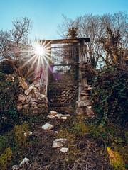 Puertas traseras (Raúl Gallego Huete) Tags: olympusomdem10markiii sigma16mm14 puerta door sun sol street streetphotography madera wood