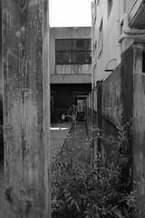 RICOH GR 45 35mm crop (HAMACHI!) Tags: tokyo 2019 japan ricoh ricohgriii ricohimaging ricohgr gr gr3 griii loadtest cameratest monochrome blackandwhite shibuya architecture exterior