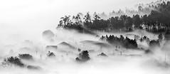 A Silva (Noel F.) Tags: sony a7r a7rii fe 100400 gm ii tc 14 long exposure silva lampai teo galiza galicia neboa fog mist