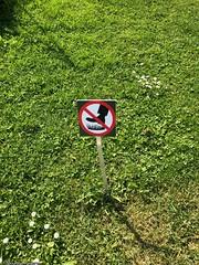 ne-pas-marcher-gazon© (alexandrarougeron) Tags: photo alexandra rougeron signalitique urbain ville écrit panneaux paris