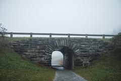 DSCF9047FullRes (djandzoya) Tags: boone boonenc hiking vacation fall fallcolors