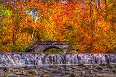 Heaven? Thank you for taking the time to like my photos. I truly appreciate it and hope you have a wonderful weekend! (Edale614) Tags: waterfall bridge river autumnleaves fall autumn fallcolors cincinnati ohio ohiophotos ohiophoto naturephotography naturelovers nature photography photo photooftheday picoftheday landscapephotography sharonwoodspark earl614
