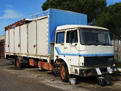 1983 Fiat - Iveco 110-14 (Alessio3373) Tags: abandoned abandonment abandonedcars abandonedtrucks unused unloved neglected forgotten forgottencars forgottentrucks rust rusty rusted rustycars corroded corrosion ruggine fiat iveco iveco110 scrap scrapped scrappedcars