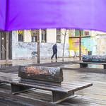 El paraguas morado thumbnail