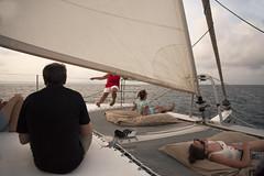 Port Douglas December 2018 (i_shudder) Tags: portdouglas sailing boat sea men women sunset queensland composition pacific tropical summer holiday relaxing australia
