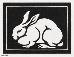 Rabbit (1923-1924) by Julie de Graag (1877-1924). Original from The Rijksmuseum. Digitally enhanced by rawpixel. (Free Public Domain Illustrations by rawpixel) Tags: madepsd madevector animal antique art artist artwork drawing drawn handdrawn illustrated illustration illustrator juliedegraag old pdrijks publicdomain rabbit rijksmuseum sketch vintage woodcut