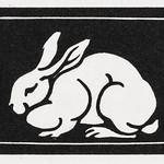 Rabbit (1923-1924) by Julie de Graag (1877-1924). Original from The Rijksmuseum. Digitally enhanced by rawpixel. thumbnail