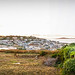 St Mary's from Buzza Tower, panorama, The Scilly Isles, UK
