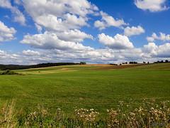 Desktop 2.0 (_MarcoM_) Tags: alsazia france germania germany desktop prato greeen grass sky nuvole clouds blue nature natura