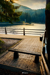wooden bench on the pier of a Synevyr lake-081810 (M. Pellinni) Tags: lake bench location forest travel outdoor autumn nature tourism wooden freedom pier synevyr synevir ukraine beautiful evening carpathian adventure mountain background environment landmark park relax coniferous hill water torrent hump scenery surrounding light magnificent viewpoint picturesque ambiance woodland transcarpathia wanderlust moment attractive glorious idyllic