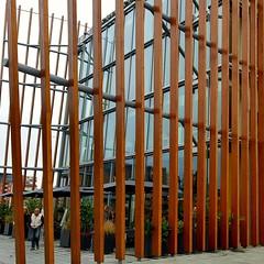 Tra le righe ... (elen@c) Tags: linee lines people milano portanuova geometry elenc glass windows wood