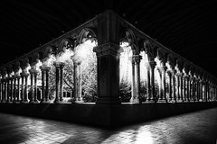 "moody fine art of the atmospheric cloister at Musée des Augustins, Toulouse, Haute-Garonne, Occitanie, France (grumpybaldprof) Tags: ""muséedesaugustinsdetoulouse"" ""couventdesaugustins"" ""muséedesaugustins"" ""middleages"" occitan romanesque sculptures statues art gothic 1309 ""augustinianconvent"" secularised 1793 ""frenchrevolution"" museum 1795 ""monumenthistorique"" cloister garden church gargoyles mood atmosphere toulouse hautegaronne occitanie france ""4thlargestfrenchcity"" tolosa airbus thales astrium ""southernfrance"" ""lagaronne"" ""garonneriver"" bw blackwhite ""blackwhite"" ""blackandwhite"" noireetblanc monochrome ""fineart"" ethereal striking artistic interpretation impressionist stylistic style contrast shadow bright dark black white illuminated ""wideangle"" canon 80d ""canon80d"" tamron 16300 16300mm ""tamron16300mmf3563diiivcpzdb016"""