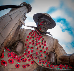 Seaham War Memorial. . . (CWhatPhotos) Tags: cwhatphotos photographs photograph pics pictures pic picture image images foto fotos photography artistic that have which contain lens seaham harbour north east coast november 2018 ray lonsdales artist sculpture steel tommy first world war rust rusting work local 1101 title seafront sea front memorial terrace samyang 75mm fish eye