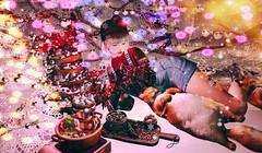叶子圣诞树 (imp朣) Tags: secondlife second life christmas cat tree