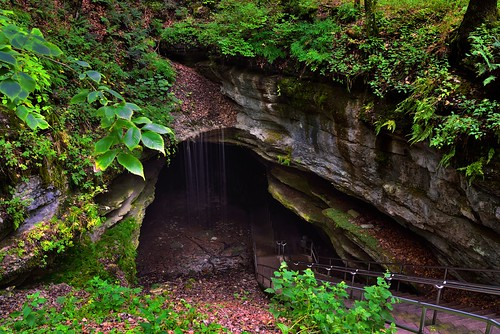 Historic Entrance and Rain-Fed Waters (Mammoth Cave National Park)