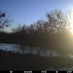 2018-12-14 17:11:15 - Crystal Creek 2 thumbnail