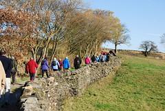 Thurstonland (Halliwell_Michael ## Offline mostlyl ##) Tags: thirdagegroup huddersfield thurstonland westyorkshire landscape nikond40x 2018 autumn walkers brighouseecho kirklees trees perspective