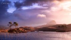 Breaking Light (Chris Davis Photography) Tags: light storm weather colours suilven scotland trees water nikon z7