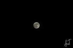 DSC_ (Anes Trebinjac) Tags: nikon d7500 18140 anes trebinjac bosna hercegovina sarajevo ilijaš pun mjesec full moon nightsky night noćno nebo