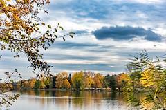 Herbststimmung am Dechsendorfer Weiher 1193 (Peter Goll thx for +8.000.000 views) Tags: 2018 autumn natur herbst dechsendorf nature erlangen bayern deutschland de