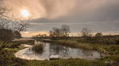 Amsterdamse Waterleiding Duinen (Adri Rovers) Tags: awd noordholland vogelenzang