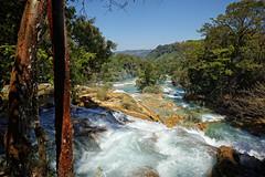 DP0Q3048 (gokselbt) Tags: chiapas aquaazul palenque