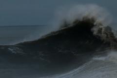 IMG_0634 (monika.carrie) Tags: monikacarrie wildlife scotland aberdeen waves