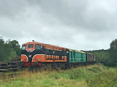 Downpatrick, 22/08/2018 (Milepost98) Tags: ni northern ireland irish dcdr heritage vintage preserved museum line shunt itg traction group diesel locomotive 146 b b146 class gm downpatrick county down railway buffet set old rake tpo 2978 carriage coach carriages coaches