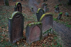 """Der Jüdischer Friedhof """"Heiliger Sand"""" in Worms (nordelch61) Tags: worms friedhof jüdisch heiligersand alt 2500grabsteine 11jahrhundert unescoweltkulturerbe"""