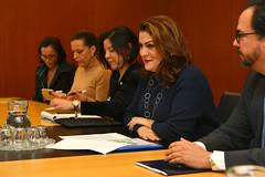 Meeting with María Dolores Agüero Lara (01911159)