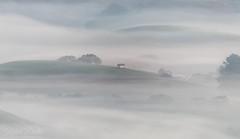 Little outhouse (wandering indian) Tags: fog nature landscape sigma nikon telephoto benro kedardatta california petaluma winterfog sunrise cloudsstormssunsetssunrises travel