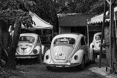 Beetles (Beegee49) Tags: street cars garage restoration volkswagen beetle blackandwhite happy planet monochrome bw sony nex5 bacolod city philippines asia happyplanet asiafavorites
