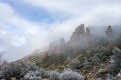 Clouded Pillars (JeffMoreau) Tags: big bend national park hoar frost clouded cloudy mist pillar shutdown clouds