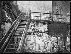 looking up, stairway, graffitied walls, River District, Ashevile, North Carolina, Mamiya 645 Pro, mamiya sekor 45mm f-2.8, Bergger Pancro 400, Ilford Ilfosol 3 developer, 1.5.19 (steve aimone) Tags: lookingup stairway walls wallsurfaces graffiti railings riverdistrict asheville northcarolina mamiya645pro mamiyasekkor45mmf28 mamiyaprime primelens 645 120 120film film mediumformat monochrome monochromatic blackandwhite urban urbandecay urbanlandscape berggerpancro400 pancro400 ilfordilfosol3developer