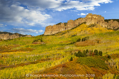 Beautiful Fall Day in the Colorado Mountains (RondaKimbrow) Tags: aspens autumn color colorado colorful fall glow landscape mountains owlcreekpass rockymountains sanjuanmountains trees sky day daytime clouds blue white yellow orange golden rocks grove aspengrove rugged scenic scenery view